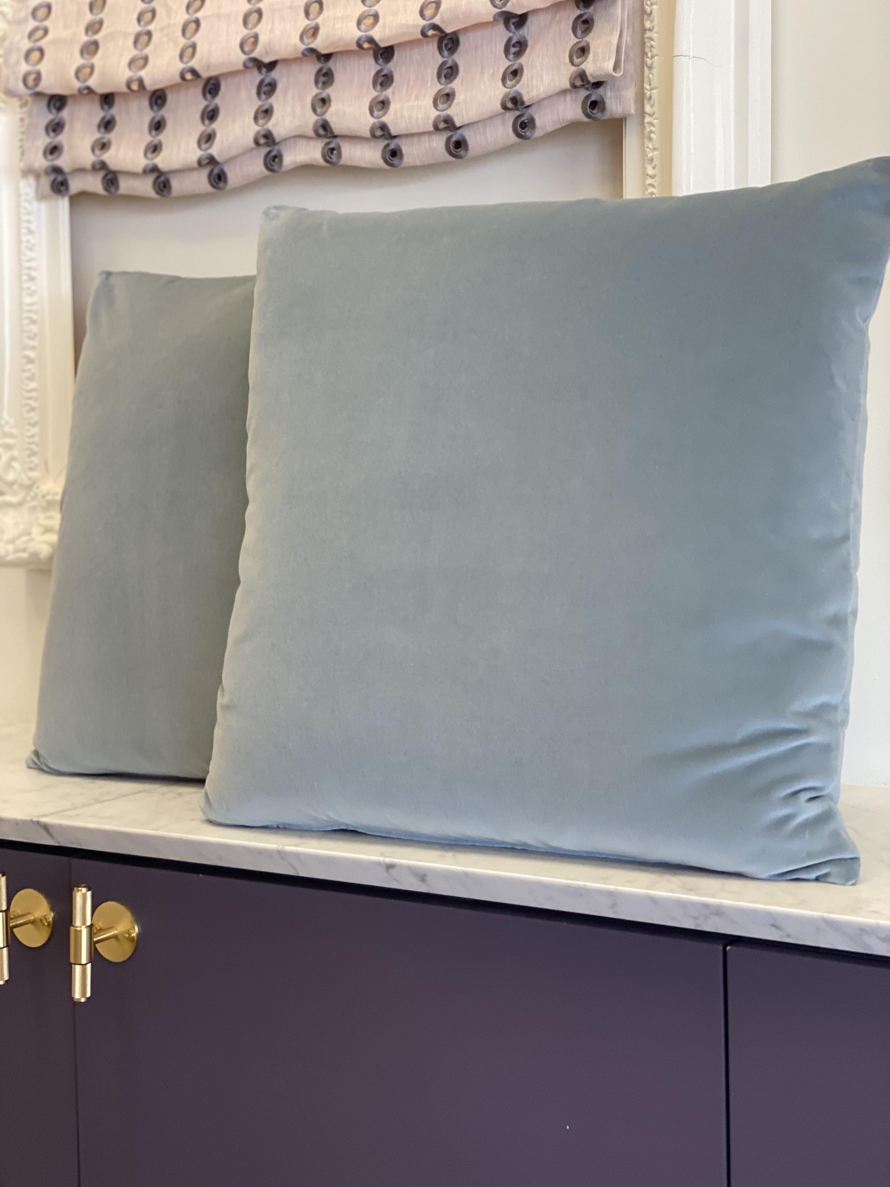 Forenza Velvet Pillows